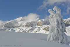Dolomiti Winter
